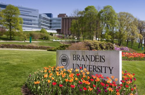 I Lost My Brandeis
